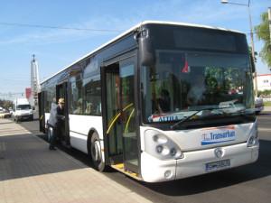 autobuze1(1)