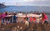 N-am mai văzut niciodată aşa ceva!. Creatură URIAŞĂ, descoperită în largul coastei californiene (V...