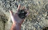 România va primi despăgubiri pentru seceta din 2012, după ce PE a votat rectificarea bugetului