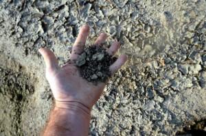 romania-va-primi-despagubiri-pentru-seceta-din-2012-dupa-ce-pe-a-votat-rectificarea-bugetului-