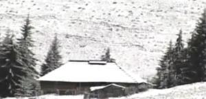 prima-ninsoare-in-gorj-la-ranca-zapada-masoara-cativa-centimetri