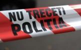Câine de luptă, găsit mort în Parcul Tei. ASPA: Cadavrele câinilor, plantate de ONG-uri!