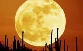 Spectacol ceresc pe 23 iunie. Luna se va afla la cea mai mică distanţă faţă de Terra în ultimele 14 ...