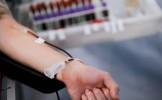 Suporterii rapidişti au donat sânge pentru românii răniţi în accidentul din Muntenegru