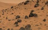 Toate organismele de pe Pământ şi-ar avea originea pe Marte. Noi argumente prezentate la o conferinţ...