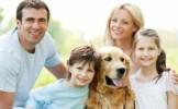 Sfatul dresorului: Ce trebuie sa stii inainte sa adopti un caine