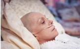 AMESTECUL MIRACULOS care protejeaza organismul de CANCER