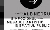 BIENALA ALB-NEGRU LA MUZEUL DE ARTĂ